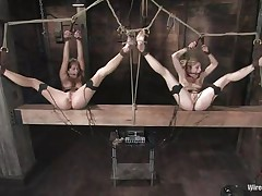 Sex slaves are bound together in rope thraldom awaiting eagerly to acquire punished. Tawni Ryden is a blond milf who likes to take part of sex games with her ally Felony, a brown haired gorgeous babe. Syd Blakovich and Claire Adams are there to enhance their pleasure, rubbing their pussies with a vibrator.